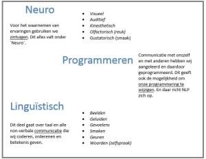 Wat betekent neuro linguistisch programmeren?