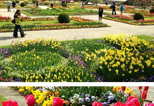 Botanischer Garten, Ausflugstipp München, Park