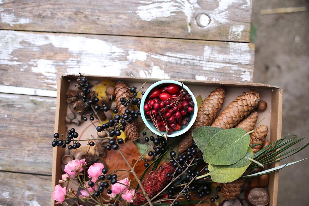 Herbstkranz, Adventskranz, Kranz selber Binden, Achtsamkeits-DIY
