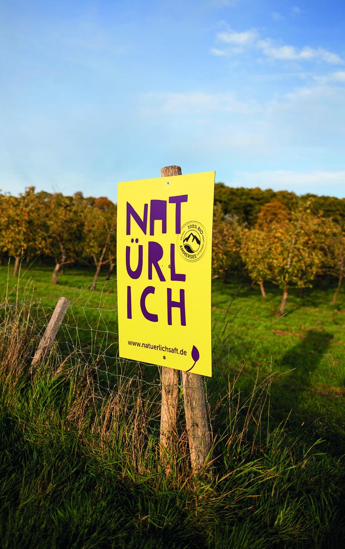 Apfel ernten, Ammersee, Natürlich Saft, Obstplantage, bei München