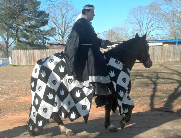 Gulf War 2013 Horse fixed