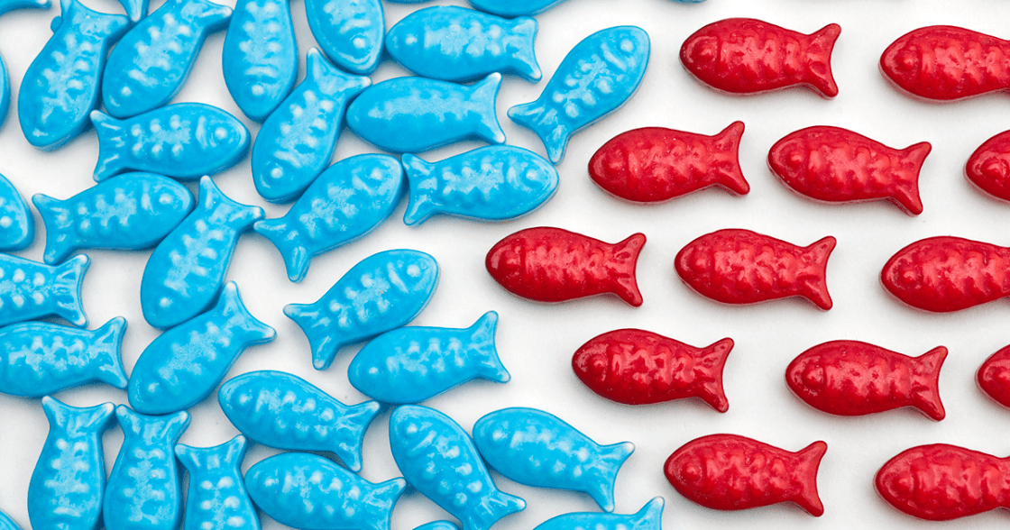 Blue fish going one way, being redirected by red fish.