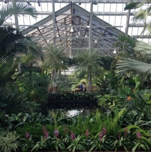 Bus Trip: Plants and History at Garfield Park Conservatory