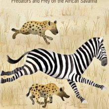 Run for Your Life!: Predators and Prey on the African Savanna by Lola Schaefer