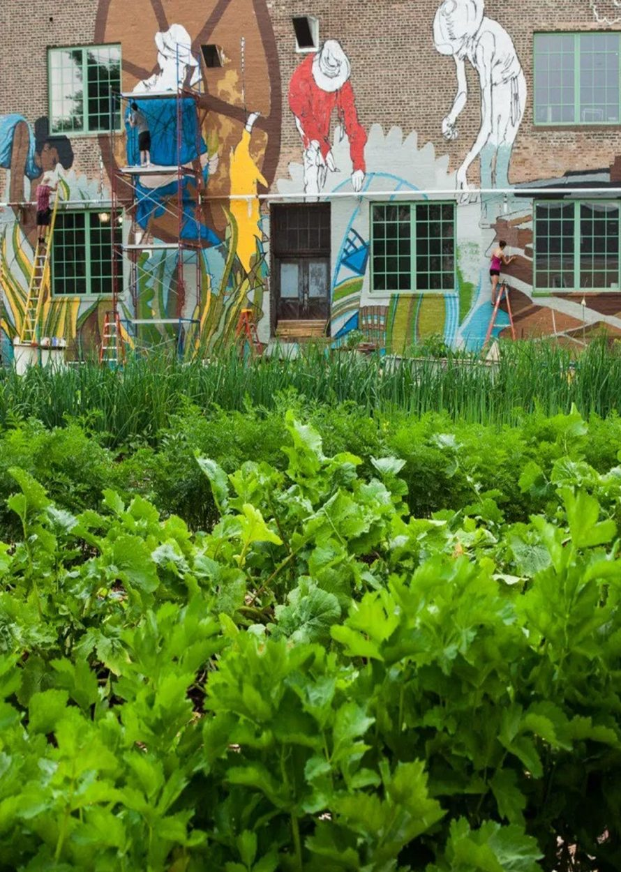 Bus Trip: Visit the Plant, a Sustainable Indoor Urban Farm