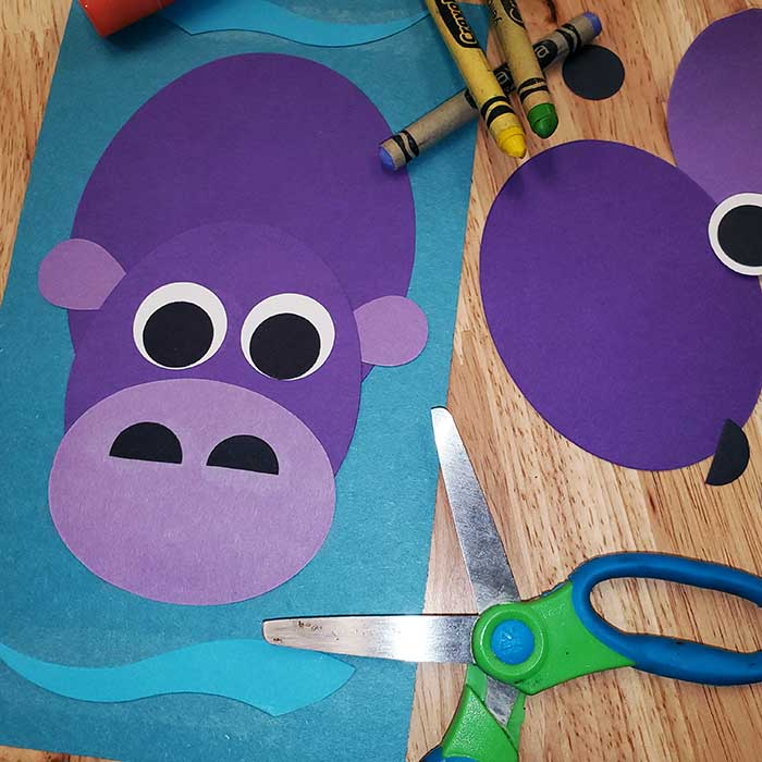 Hippo Craft Project