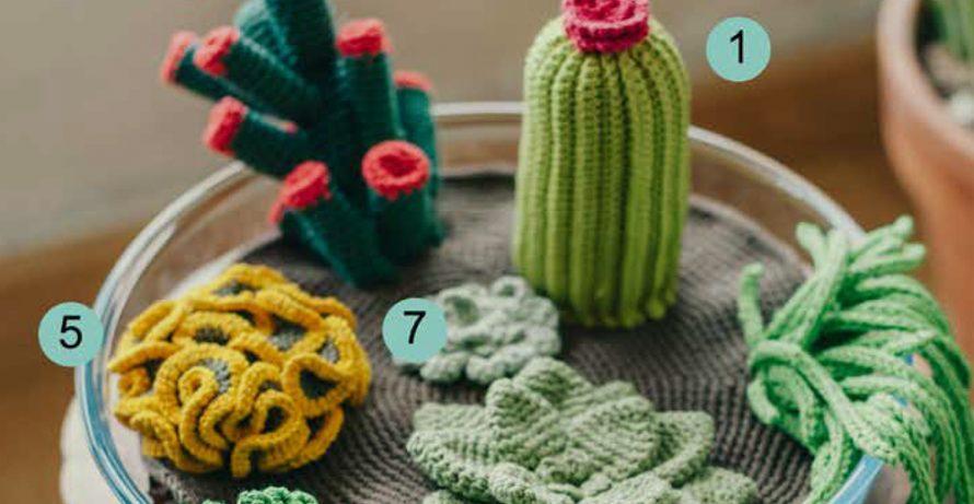 Crochet a Succulent Garden