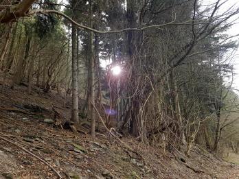 Extratour Mehringer Schweiz Rocite305 (3)