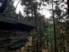 Extratour Mehringer Schweiz Rocite305 (7)