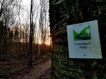 Tiefenbadtal-Pfad, Sankt Wendel