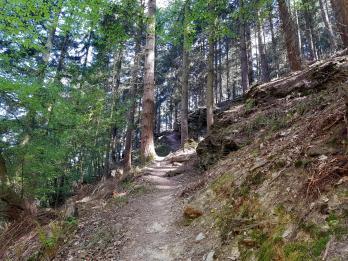 Mehringer Schweiz (2)