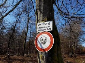 Revierguide Suedpfalz Tag 2 Inov8 Roclite305 (47)