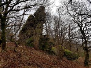 Saar-Riesling-Steig - Inov-8 Roclite 305 (28)