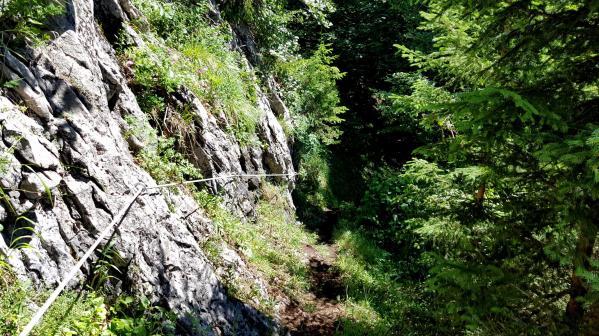 Trailrunning - Trier (1)