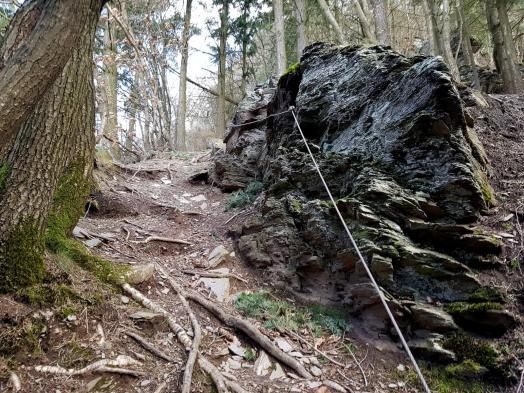 Trailrunning - Trier (12)