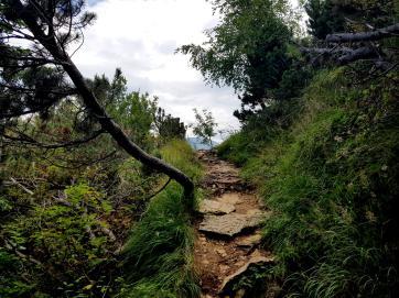 Trailrunning - Trier (22)