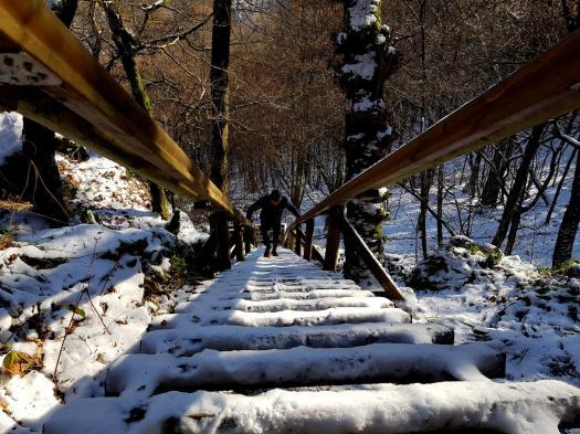Trailrunning - Trier (28)