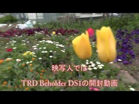 映写人はTRD Beholder DS1 導入しました。