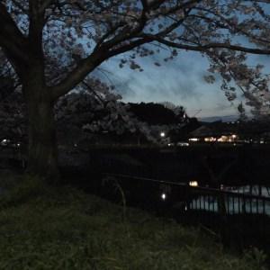 Panasonic HC-WX990Mで夜景の撮影テストをしてみました。