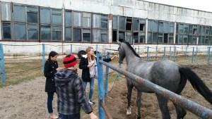 """Молодежный центр """"Уманский Благовест"""" посетил ипподром"""