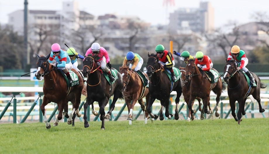 【競馬予想】京成杯GⅢ【2021】