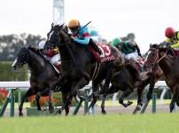【競馬で副収入】京都大賞典GⅡ【2021】