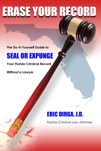 Erase Your Record - DIY Florida Expungement Book