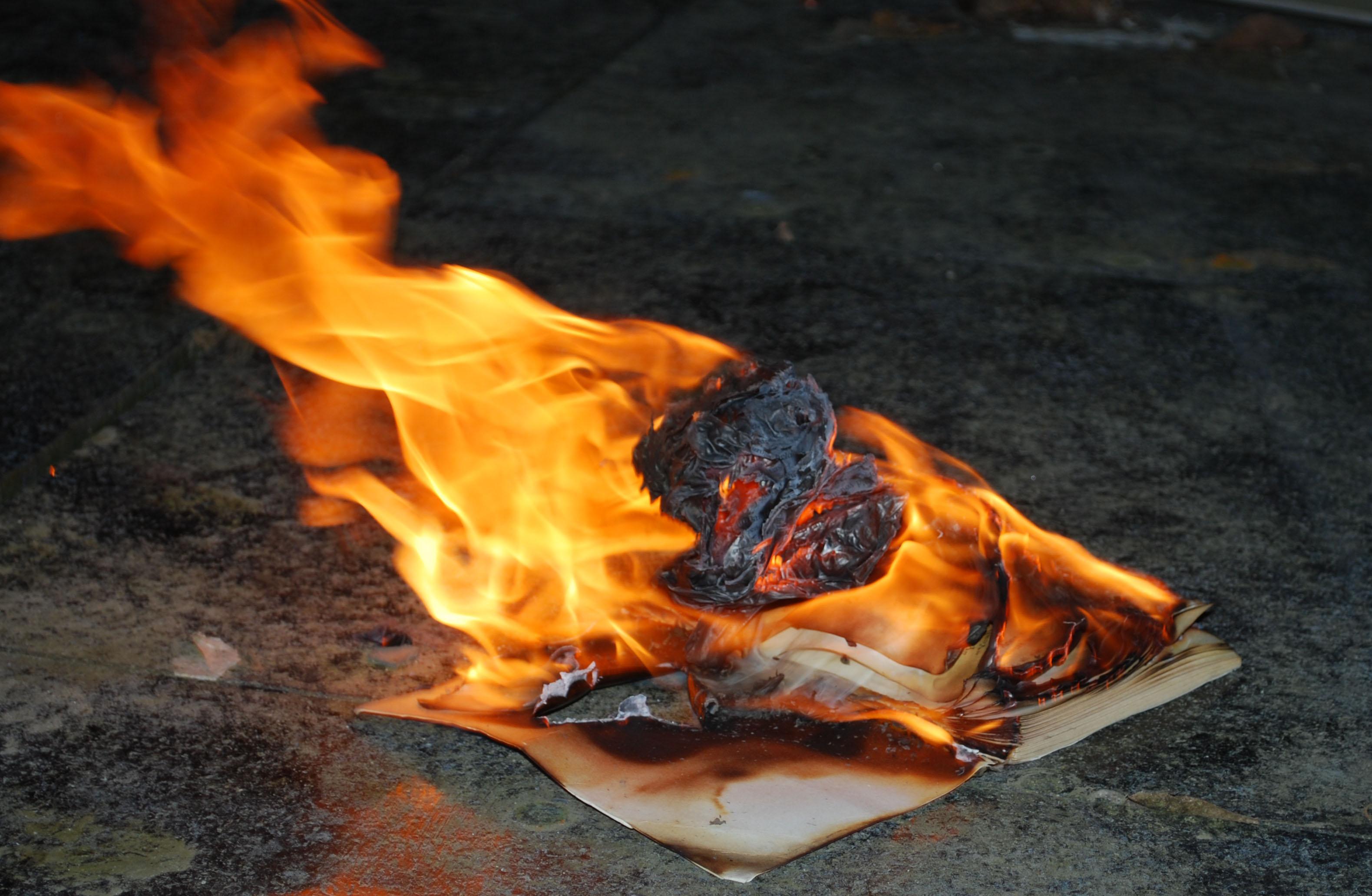 Why we burn books  Mersiha Gadzo