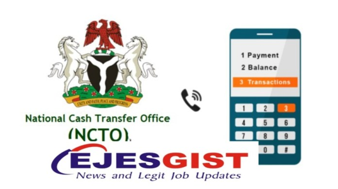 Conditional Cash Transfer USSD Codes For All Nigerian States