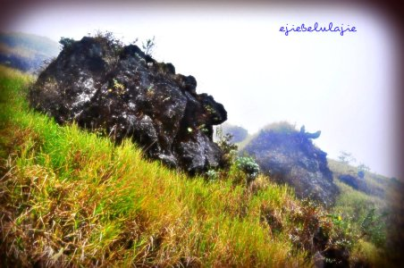 Batu di kemiringan Sindoro (doc pribadi)