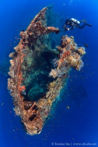 Diver checking out the stern of Tulamben wreck(USAT Liberty), Bali. Indonesia. Canon 7D, 10mm, Natural light.