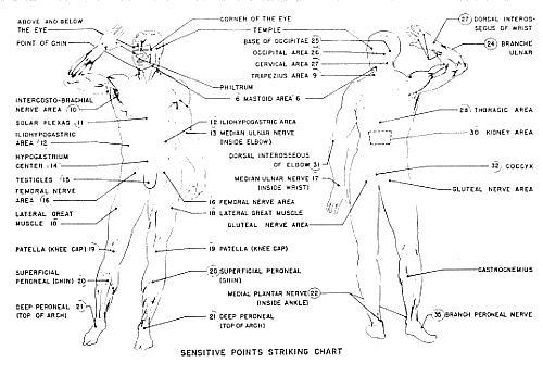 pressure points diagram massage 1984 chevy c10 headlight wiring vital dim mak pearltrees
