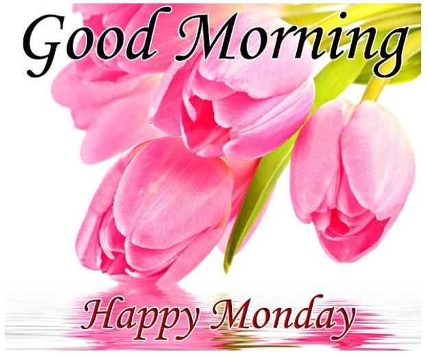 Great Morning Monday Image