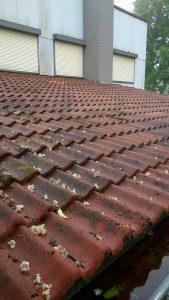 EJOP Schoonmaak dak reiniging voor reinigen