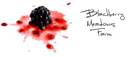 http://blackberry-meadows-farm.myshopify.com/