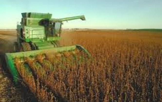 Reporte: Empresarios de tres países dominan la agroindustria en Bolivia