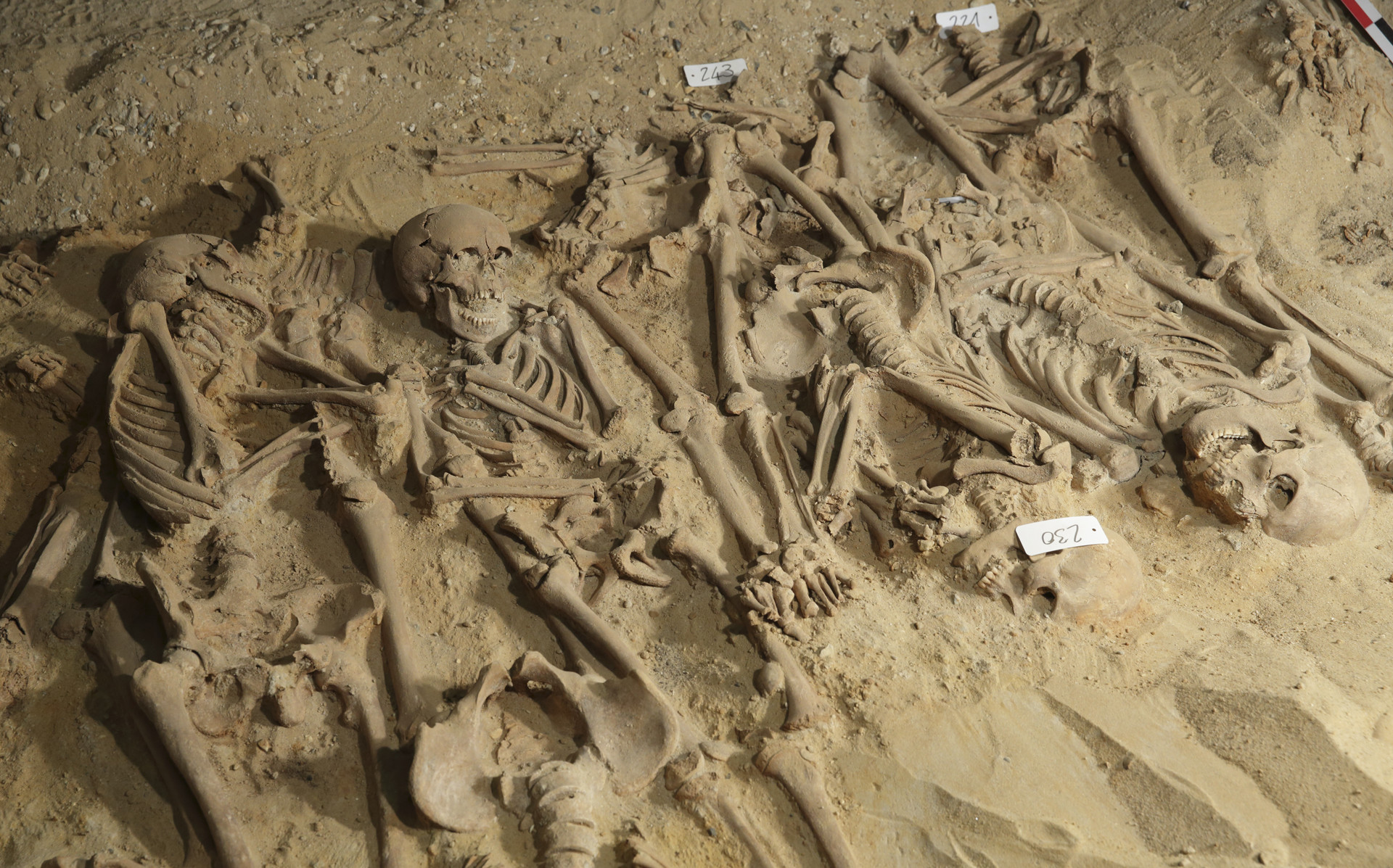 Unos esqueletos bajo el almacén Monoprix Reaumur Sebastopol, Paris, Francia, 10 de marzo de 2010.