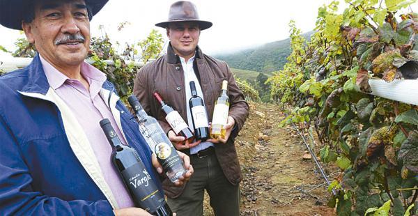 El vino es producido con uva cultivada a 1.750 m.s.n.m.