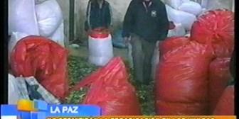 Cocaleros declaran estado de emergencia