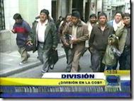 division-cobistas
