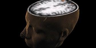 Científicos descubren zona del cerebro que ayudaría a predecir crímenes