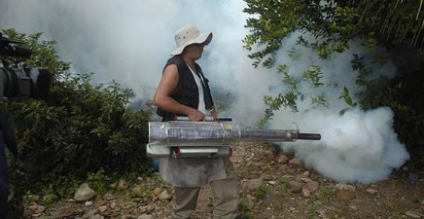 Apuran los operativos contra el mosquito Aedes aegypti en Riberalta