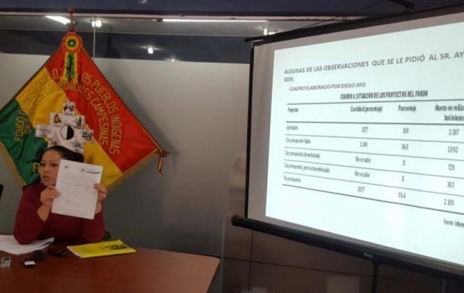 Interventora del ex Fondo Indígena estudia acciones contra Diego Ayo