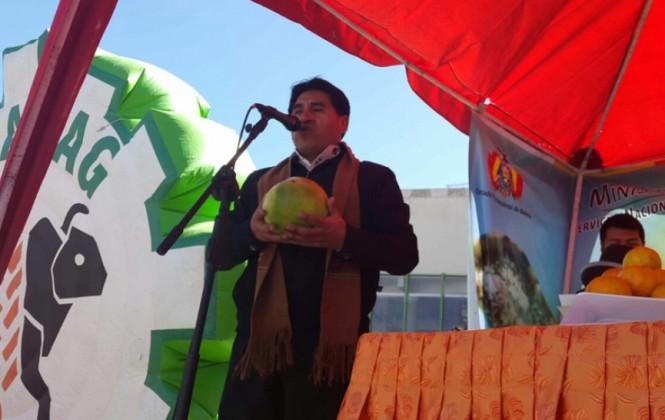 Gobierno decide cierre en fronteras al ingreso de cítricos
