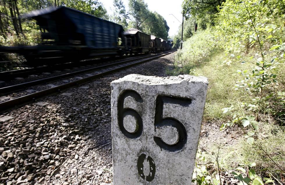 El área donde se cree que el tren nazi estaría enterrado, en Walbrych, Polonia.