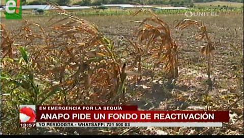 Anapo pide un fondo de reactivación económica