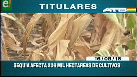 Titulares de TV: Sequía afecta 206 mil hectáreas de cultivos en todo el país