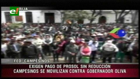 Tarija: El Prosol moviliza a los campesinos