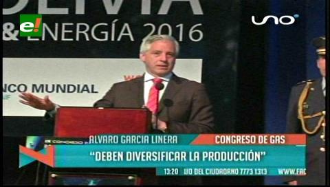 Vicepresidente pide a las empresas diversificar su producción
