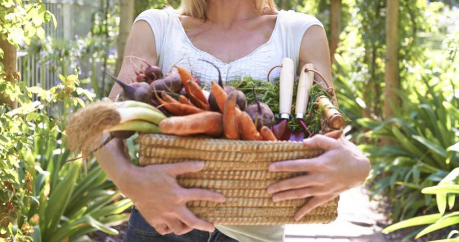 Los alimentos solo pueden ser biológicos. (iStock)